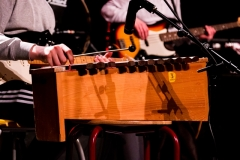 GerritvdVeenCollege muziekpresentatie maart (24)